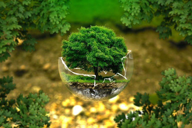 militarização órgãos ambientais