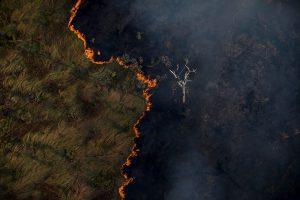 política ambiental desmatamento da amazônia