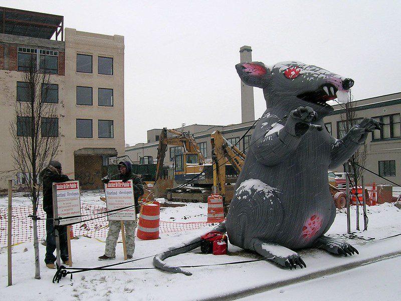 Foto mostra uma ratazana inflável em um protesto